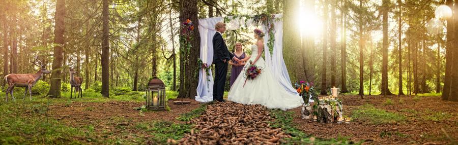 heiraten harz hochzeit fotos 15