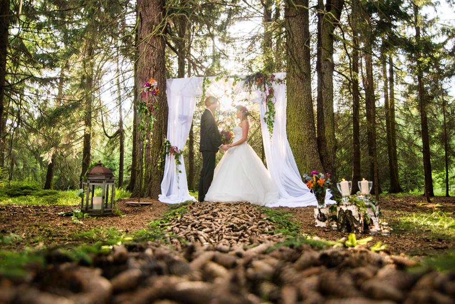 heiraten harz hochzeit fotos 2